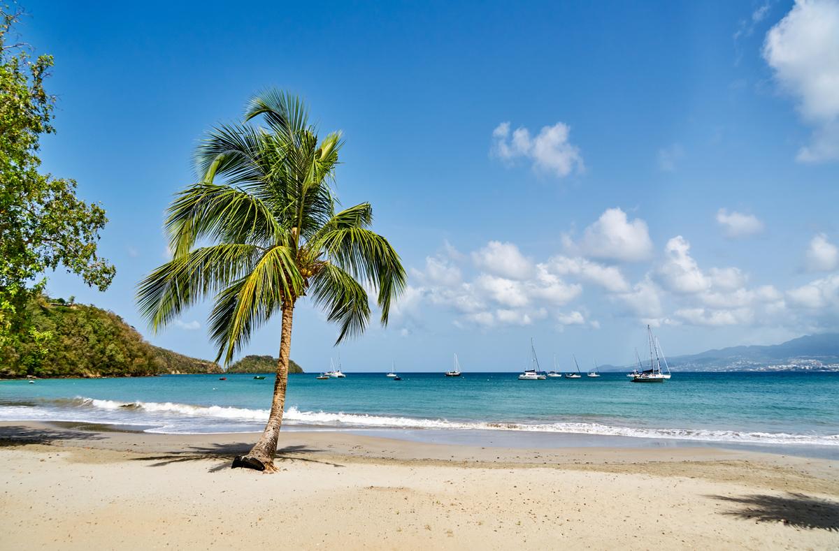 Plage Martinique R. Haughton