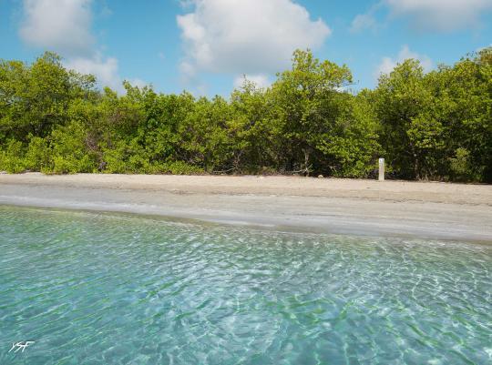 Baie du Trésor Martinique La Caravelle